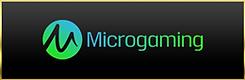Microgaming.png