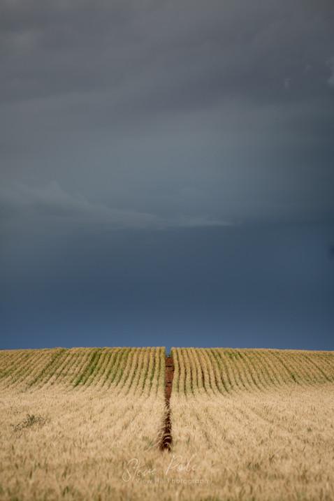 Mallee Storm 3