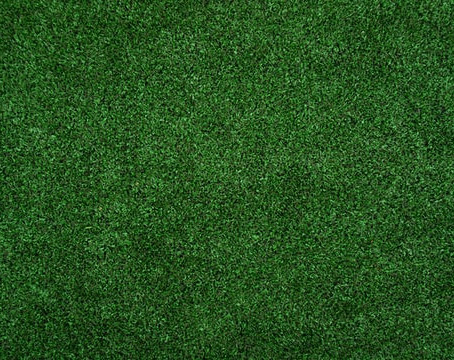 New Home Owners: Three Tips for Incredible Sod