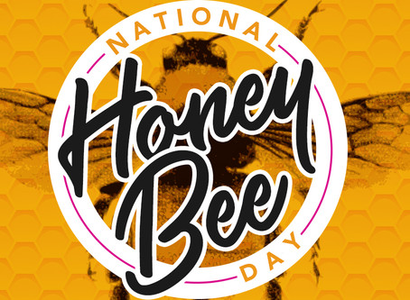 Will you be My Honey (Bee)?