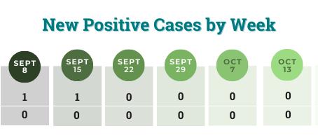 COVID-19 Case Dashboard: October 13
