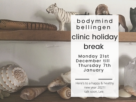 clinic holiday break