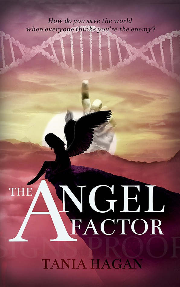 PROOF the angel factor_edited.jpg