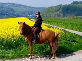 Isabelle Bezençon avec Osk du Schlossmatt, Forel/Lavaux (VD)