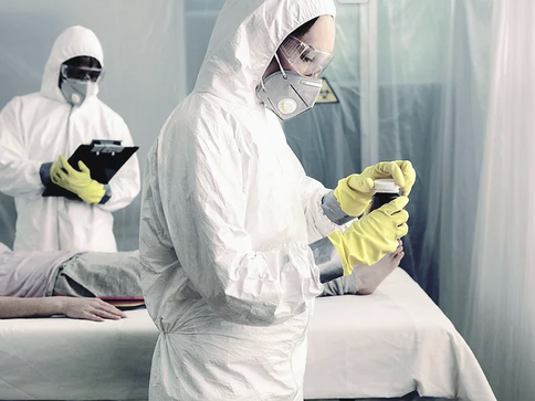 抗ウイルス効果の検証に用いた real time PCR法について