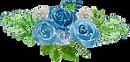 blue-rose-4.png