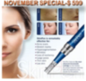 SKIN PEN-NOV-1_edited.jpg