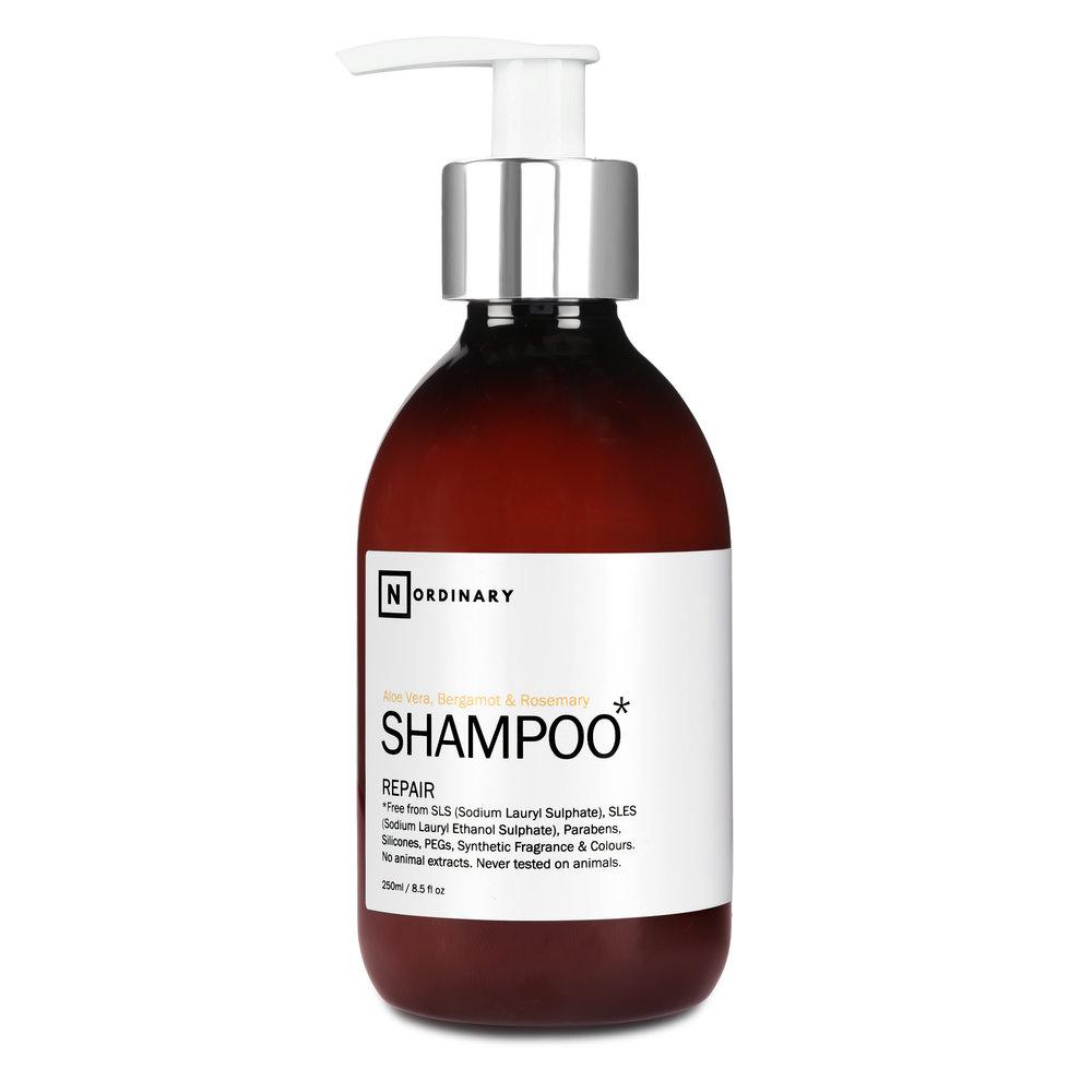 No Ordinary Shampoo with Aloe Vera, Berg