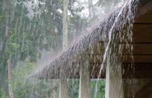 Did you notice any leaks in your roof after our heavy rainfall?