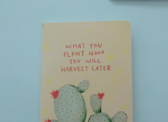 MORI - What You Plant Now You Will Harvest Later NOTEBOOK