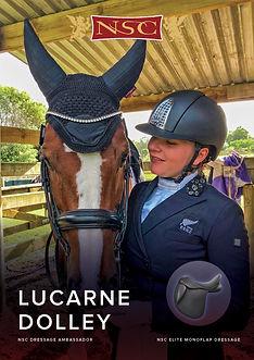 lucarne-new.jpg
