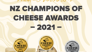 Gold & silver medal winners at NZ Champions of Cheese Awards 2021