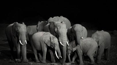 Kenya01.jpg