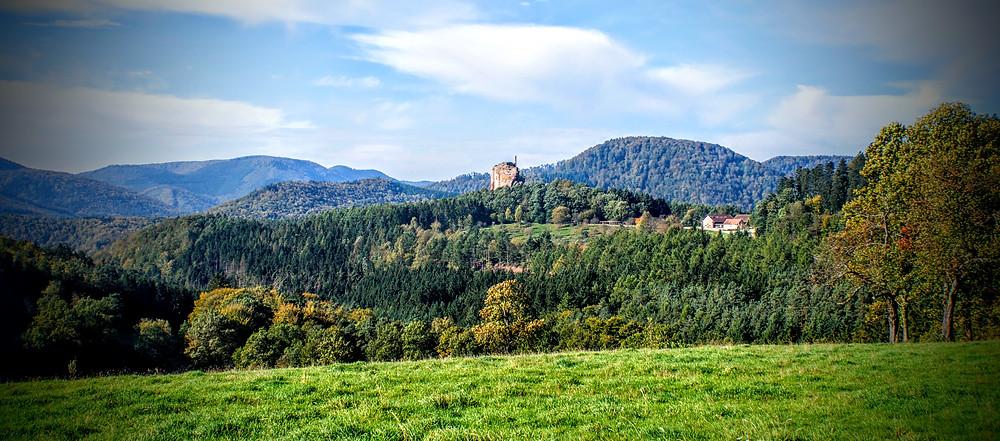 Blick vom Gimbelhof auf die Burg Fleckenstein