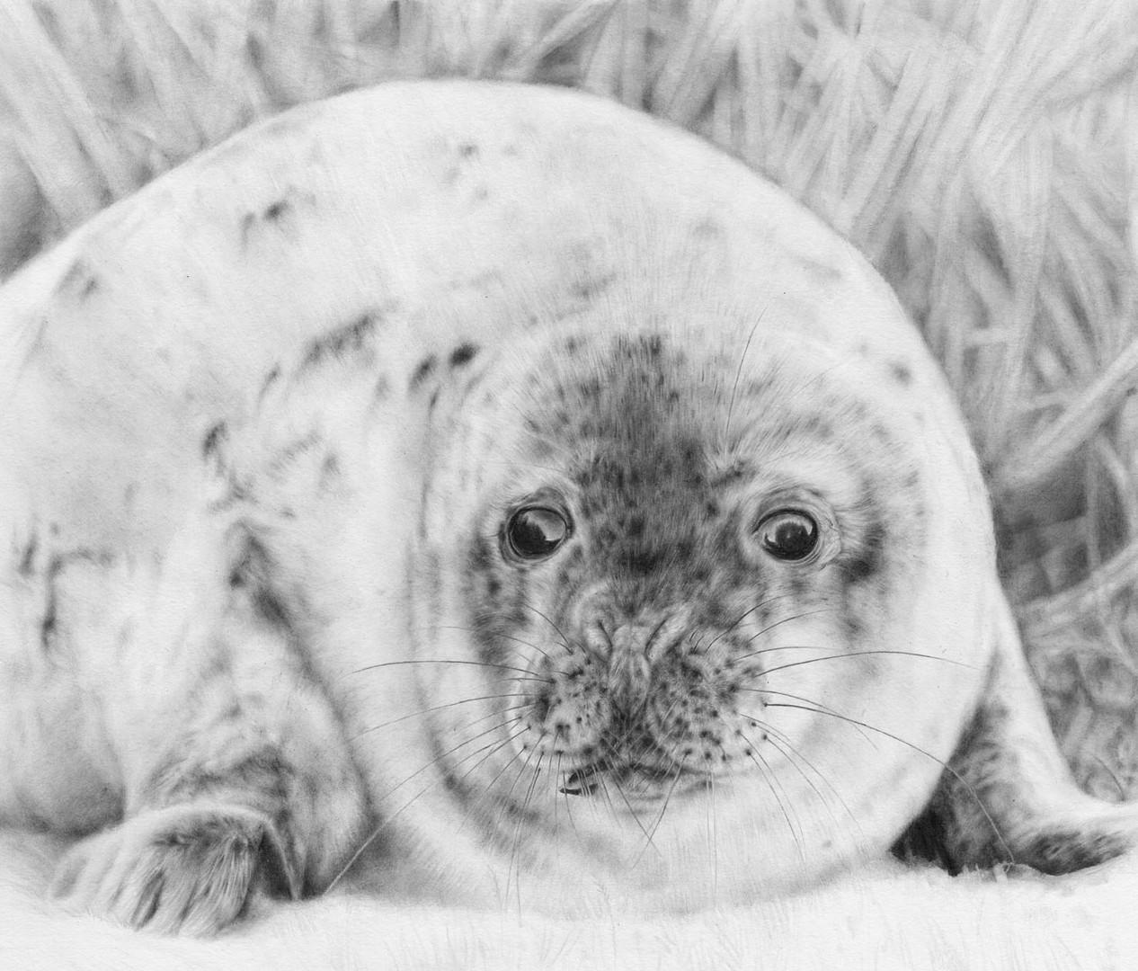 December Seal