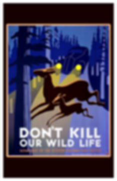 Dont Kill Wild Life.png