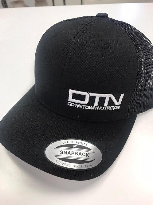 DTN FlexFit Snap Back Hat