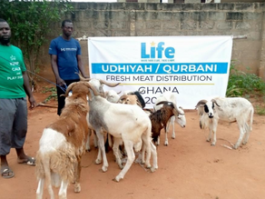Life Distributes Udhiyah Meat in Ghana