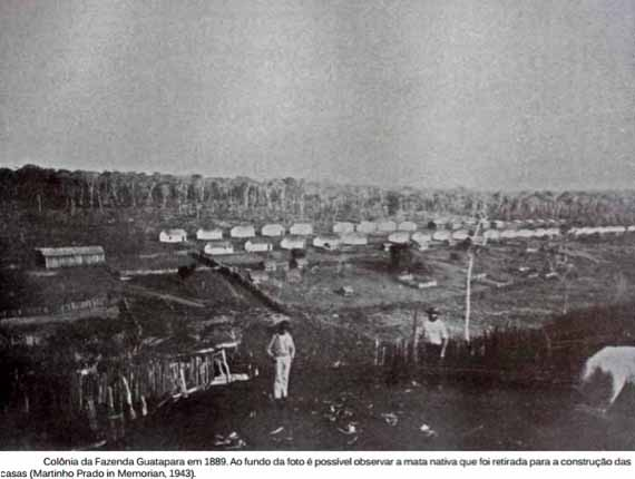 1889年ころのグァタパラ耕地