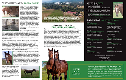 Horse Rescue Newsletter