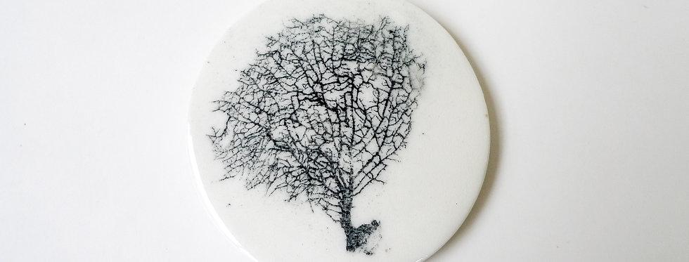 Plaque de porcelaine corail