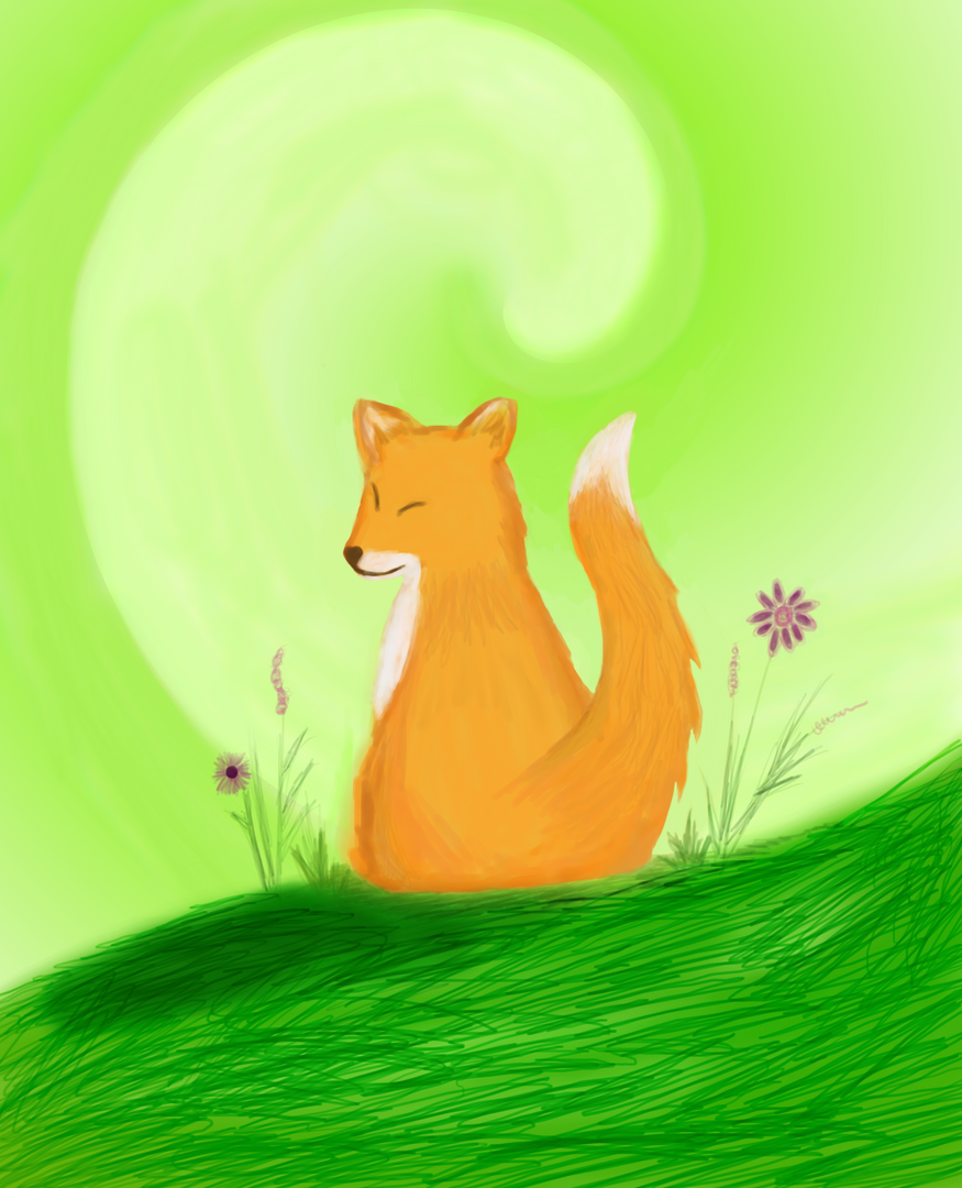The Mindful Fox