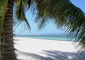 Classic white sandy beach on the Indian Ocean coast, with palm trees, near Malindi Sea Fishing Club, Kenya, East Africa.