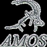 Association-of-Mozambique-Hunting-Safari