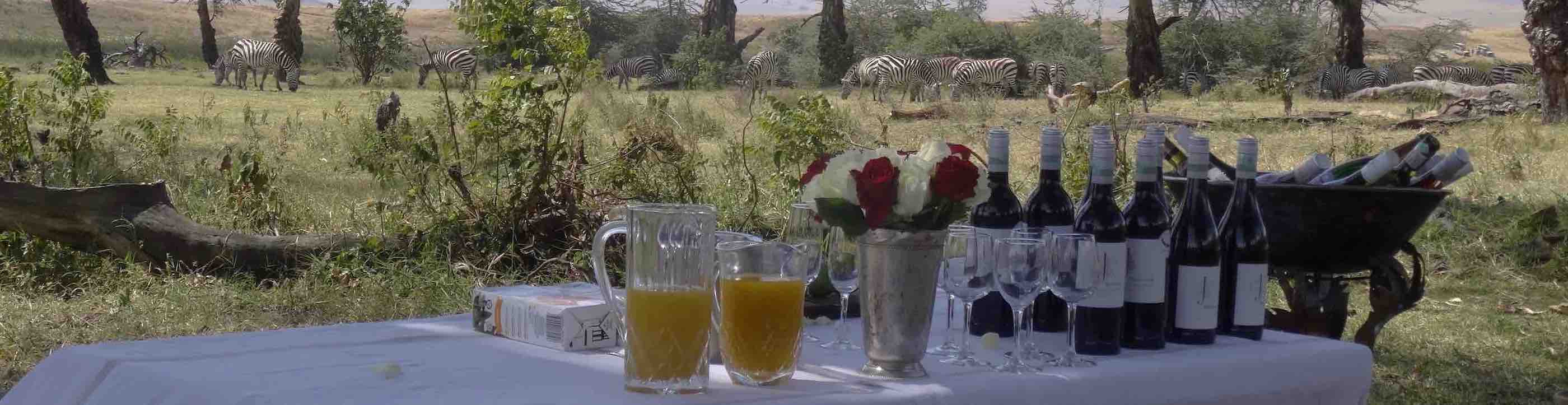 Tanzania camp drinks with classic East Africa bush view, managed by local community ecotourism hunti