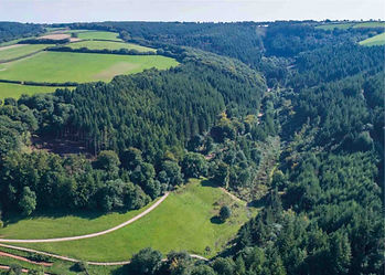 Ariel view of a high bird pheasant shoot in North Devon, England, deep rich woodland valley habitat with conservation glades.