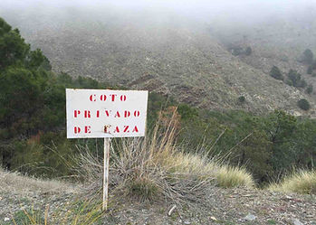 Sign stating Coto Privado de Caza (Private Hunting) within the Southeastern Ibex conservation hunting area of Guadix.