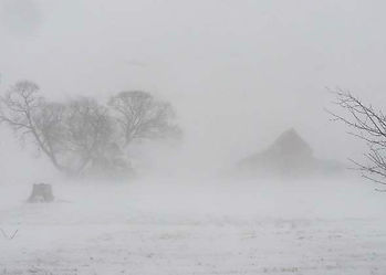 Winter snow & wind blizzards with low visibility of tree and bushes; the day has been cancelled due to bad weather.