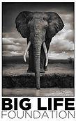 Big-Life-Foundation-Logo-Elephant-Wildli