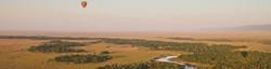 Arial view of hot air balloon over the yellow daze grassland savanna plains of the Maasai Mara.