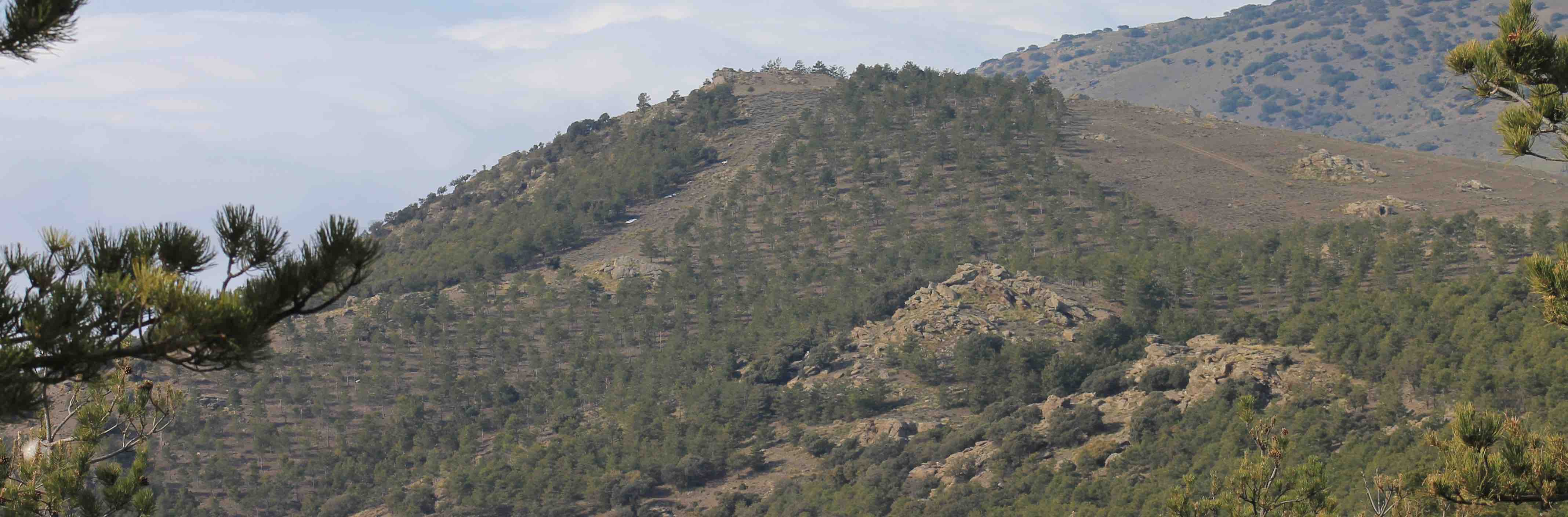 Our exclusive hunting area in Guadix, Granada, Andalucia, Spain for sustainable mountain Southeaster