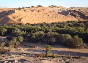 Namibia-Kalahari-Desert-Western-Extensio
