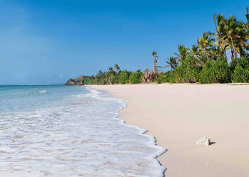 Picture postcard of tropical palm-fringed white sandy beach, with turquoise warm waters of the Indian Ocean, Kenya.