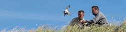 Two sustainable-use wildlife conservation research scientists ringing ground nesting birds.