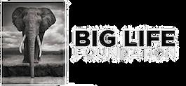 Big-Life-Foundation-Sustainable-Conserva