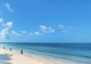 Classic white sandy beach on the Indian Ocean coast, with palm trees, near Malindi Sea Fishing Club, Kenya, East Africa.