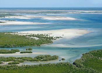 Indian Ocean Zambezi delta of patchwork mangrove islands with sandy beaches & tropical blue seas.