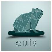 Cuis logo.jpg