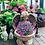 Thumbnail: Angle flower pot