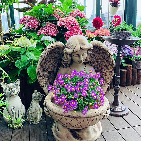 Angle flower pot
