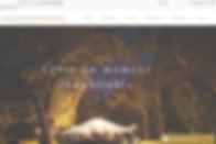 Création de site internet - web - site internet personnalisé