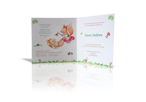 Illustraties en vormgeving geboortekaartje eekhoorns