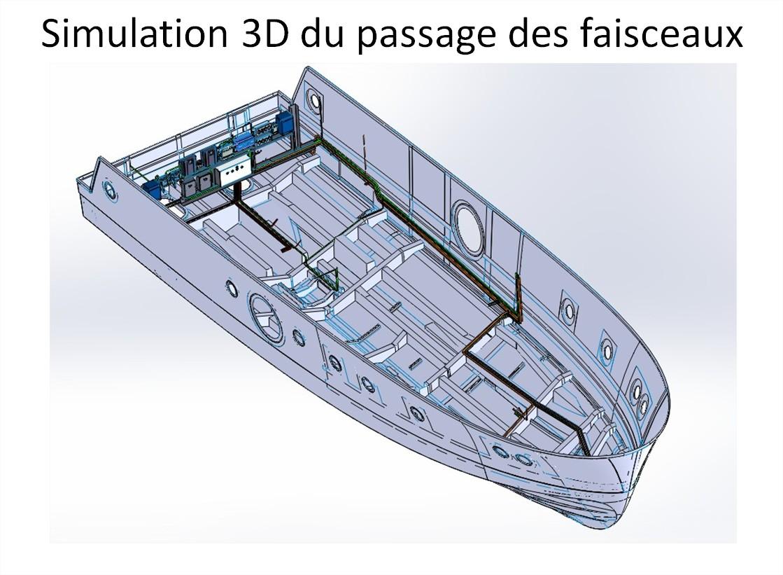 Simulation 3D du passage des faisceaux