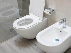 WC und Bidet.png
