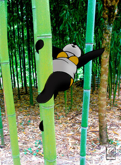 Bambou dance - Var, France - Available in shop