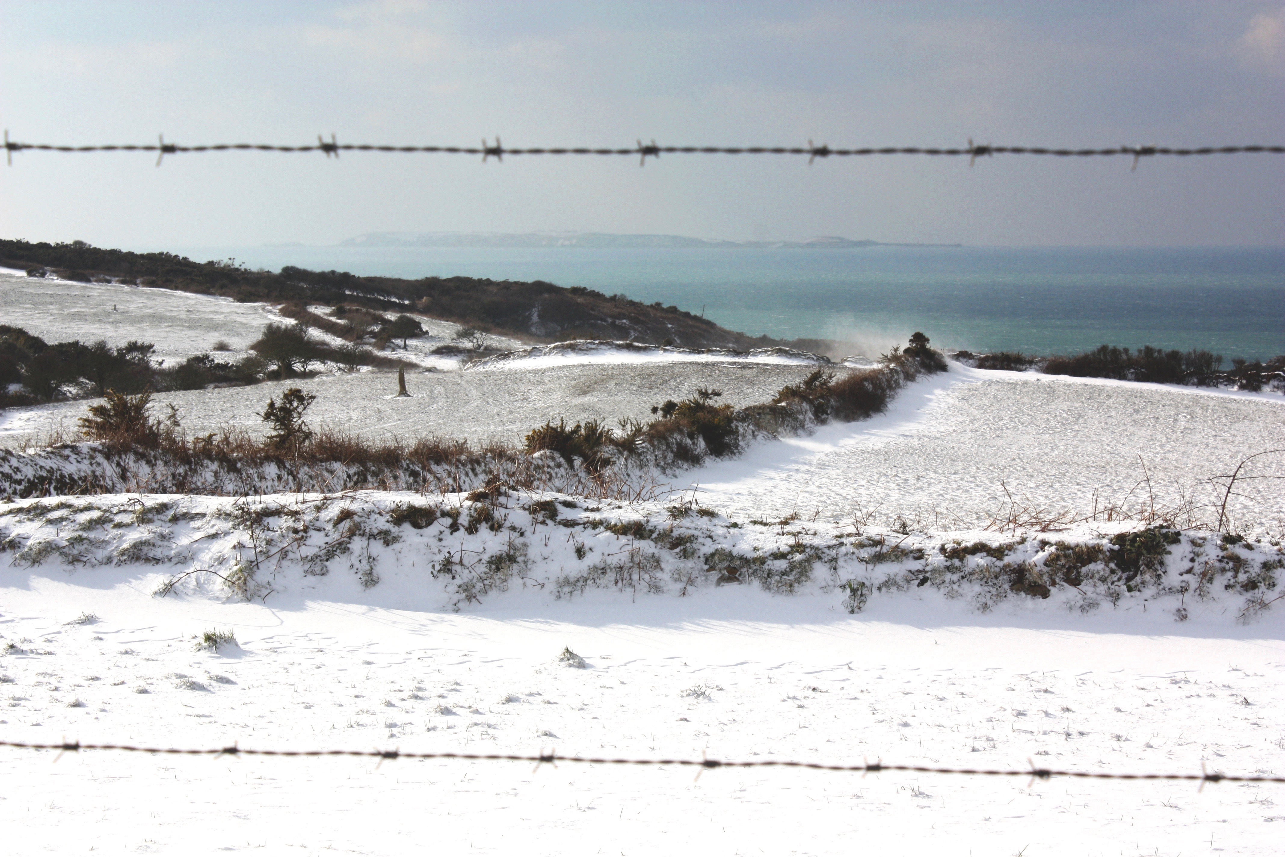 La neige sur front de mer (50€)